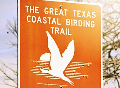 Birding Trail Sign