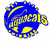 Bay Citys AquaCats